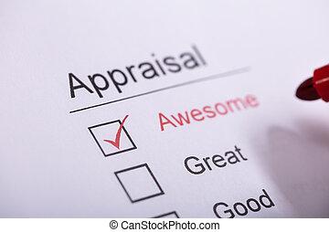 Businessperson Filling Appraisal Form