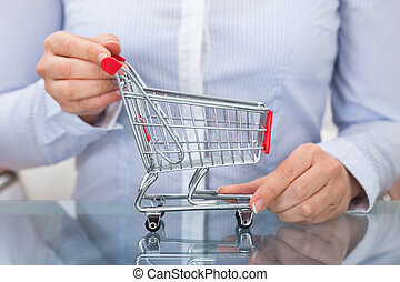 Close-up Of Businessperson Holding Empty Shopping Cart