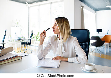 Businesswoman at the desk with notebook in her office.
