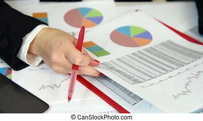 Businesswoman Audit Financial Repor