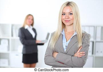 businesswoman, collega's, mooi, kantoor, achtergrond