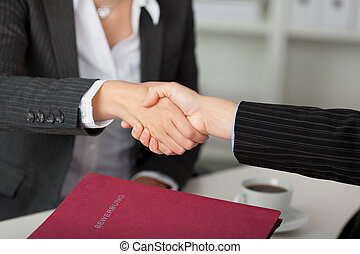 Businesswoman Shaking Hands At Desk
