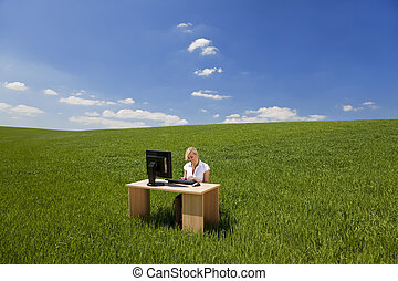 Businesswoman Using Computer In A Green Field