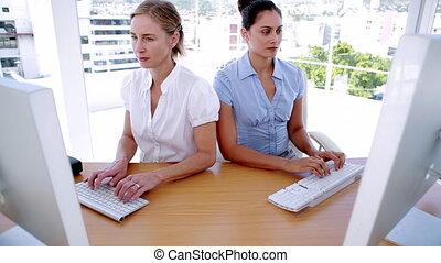 Businesswomen working on computers