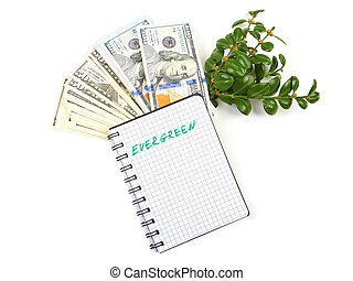 buskar, lagförslaget, anteckningsbok, grön, filial, hundred-dollar