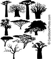 buskar, olika, träd, afrikansk