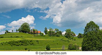 buske, bayern, hus, det, træer, grønnes høj, springtime