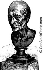 Bust of Voltaire by Houdon, vintage engraving.