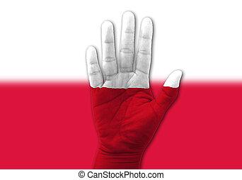 but, ouvert, multi, concept, drapeau, pologne, élevé, main, peint