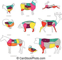 Butcher shop concept vector illustration. Meat cuts. Animal parts diagram of pork, beef, lamb, duck, chicken, rabbit.