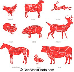 Butcher shop concept vector illustration. Meat cuts. Animal parts diagram of pork, beef, lamb