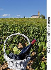 butelka wina, i, grappes, w, kosz, i, kościół, w, francja