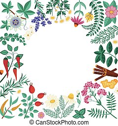 butik, örtar, organisk, mall, inbjudan, homeopatisk, kort