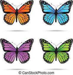 butteflies, multicolor