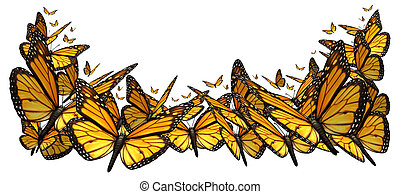 Buttefly Border - Butterfly border design element isolated...