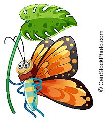 Buttefly holding green leaf on white background