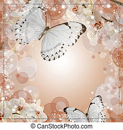 Butterflies and orchids flowers beige background