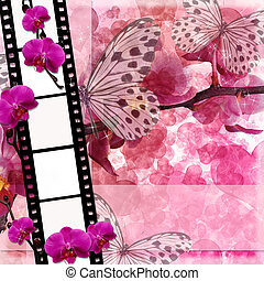 Butterflies and orchids flowers pink background with film frame( 1 of set)