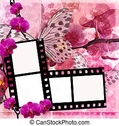Butterflies and orchids flowers  pink background  with film frame ( 1 of set)