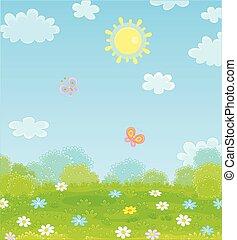Butterflies flying over a field