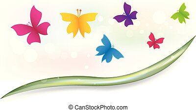 Butterflies garden colorful template