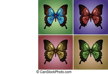 Butterflies in four colors