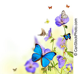 Butterflies in meadow - Beautiful flower background with ...
