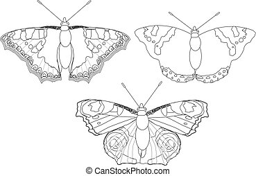 Butterflies line drawing