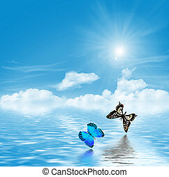 butterflies on a background of blue sky with clouds
