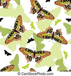 Butterflies seamless pattern