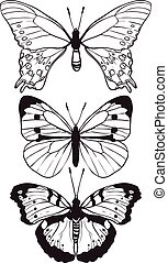 Butterflies set hand drawn