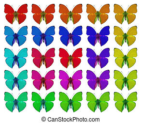 Butterflies showing concept of colors, crowd, difference, ...