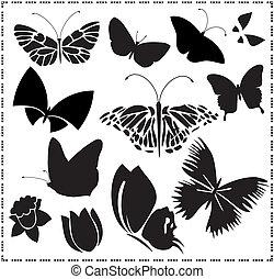 butterflies vectors set