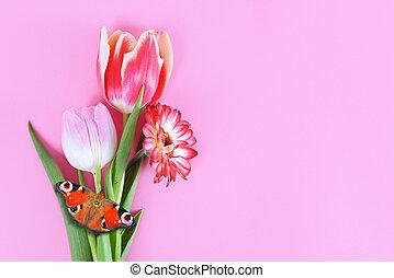 butterfly., קפוץ פרחים, גרברה, צבעוני