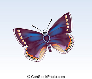 Butterfly 5 - Digital illustration. Gradient mesh. Gradients...