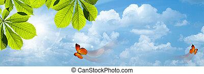 butterfly., blauwe hemelen, met, heldere zon, als, abstract, achtergronden