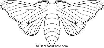 butterfly Bombyx mori. Sketch of butterfly. butterfly...