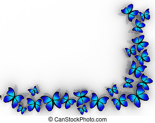 Butterfly border - Butterfly frame on white background -...