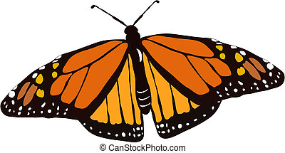 Butterfly Cartoon - Monarch Butterfly Illustration