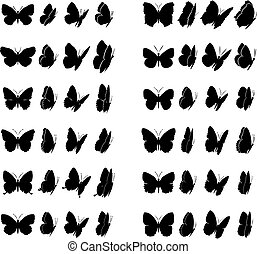 Twelve butterflies collection. Each different in four various views