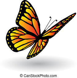 Detailed illustration of a butterfly