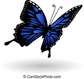Butterfly - Detailed illustration of a blue butterfly