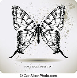 Butterfly, hand-drawing. Vector ill