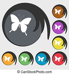 butterfly icon sign. Symbol on eight colored buttons. Vector