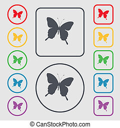 butterfly icon sign. symbol on the Round and square buttons with frame.