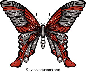 butterfly illustration isolated on white background
