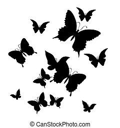 butterfly., ilustración, vector