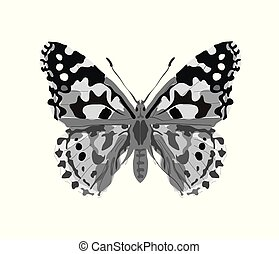 Butterfly in gray tatoo style isolated on white background. vector illustration