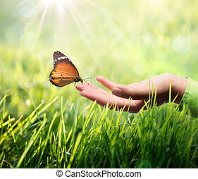 butterfly in hand on grass  - butterfly in hand on grass