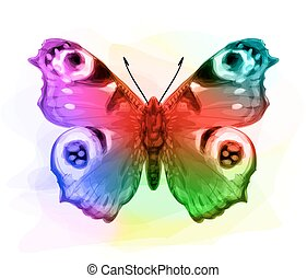 Butterfly Inachis Io. Iridescen colours.
